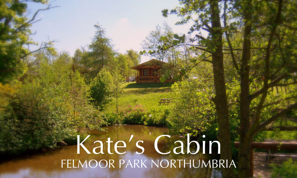northumberland luxury log cabins | accommodation in northumberland